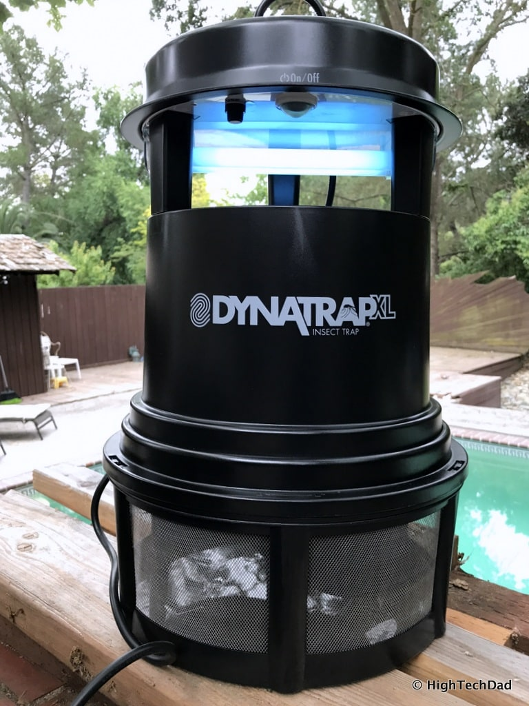 Dynatrap Review - on and catching bugs