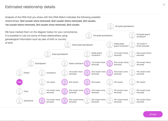 HTD MyHeritage DNA kit - family tree explanation