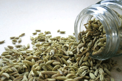 FENNEL ( سونف Reduces water retention