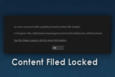 How to Fix Paladins Content File Locked of 2020