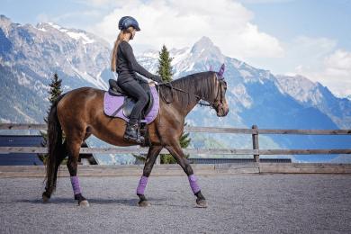Horse Racing Equipment List