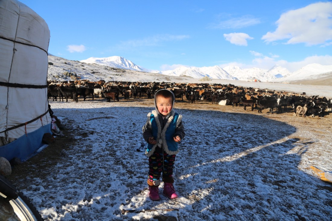 Nomad in Mongolia: Baby Nomad