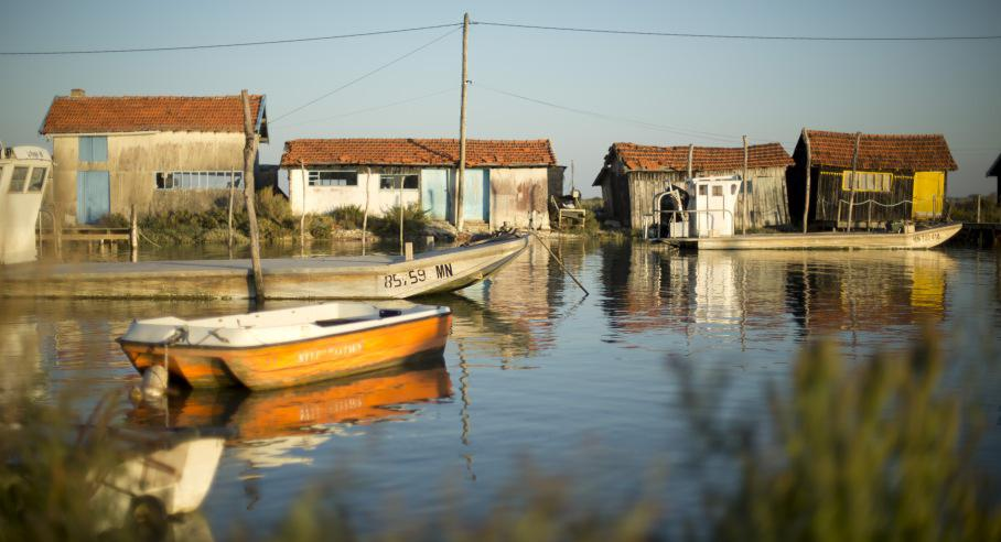 paysage charente maritime