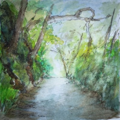 The leafy road from the woods