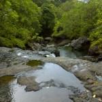 Looking downstream on Hanakapi'ai Stream