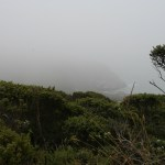 Even when foggy, the coastal view has an eerie beauty
