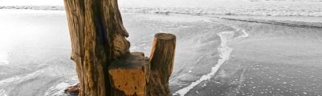 Zmudowski Beach with photoshopped driftwood. Photo by Jim Bahn (http://www.flickr.com/photos/gcwest/) under Creative Commons licensing.