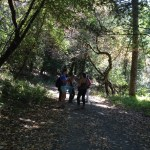 Wunderlich's trails are largely shady, making them great for summertime hikes