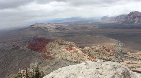 View from Turtlehead Peak