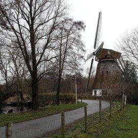 Aalsmeer – Schinkelbos, 8 januari 2017