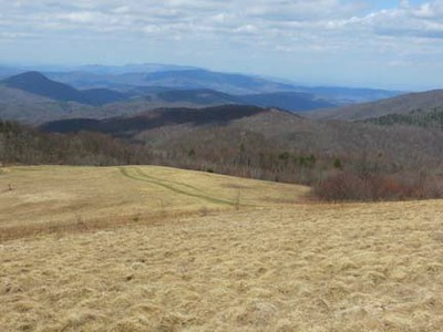 Brown Gap to Lemon Gap - Max Patch