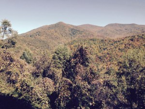 View from Balsam Mountain Preserve