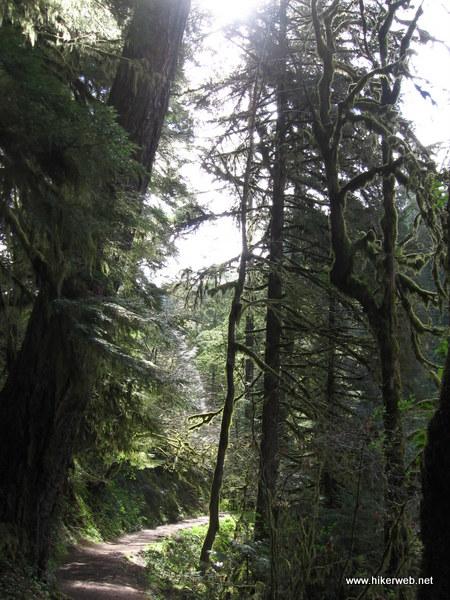 Eagle Creek near start