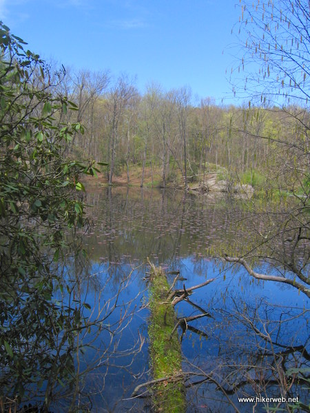 A view north from the southern edge of Lake Lenape.