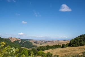 Briones Reservoir Roller Coaster Loop-East Bay | Hike Then Wine