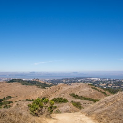 Wildcat Canyon Ups and Downs – East Bay