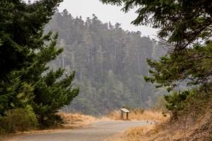 Big River, Big Views - Mendocino | Hike Then Wine
