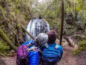 Russian Gulch Waterfall Hike and Salmon Spawning! – Mendocino