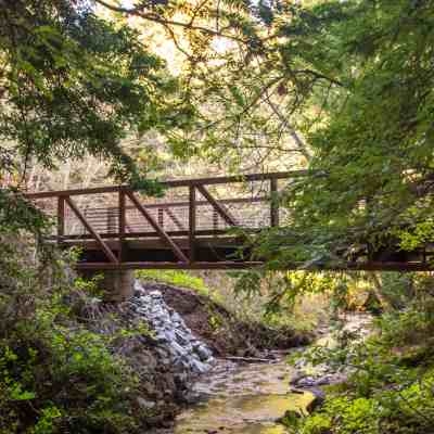 Purisma Creek Redwoods Preserve Adventure – South Bay