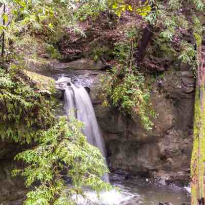 Sempervirens Falls – Big Basin Redwood SP