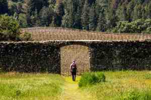 Earth Day Volunteer Day at Jack London SP - Sonoma County   Hike Then Wine