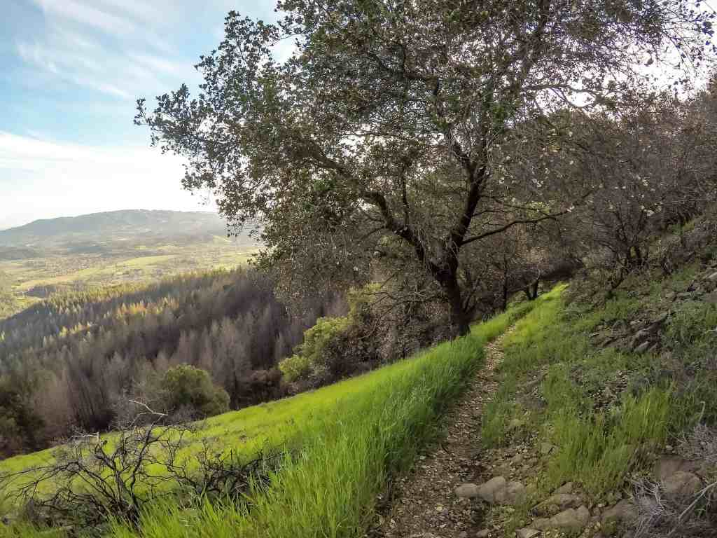 Hood Mountain to Sugarloaf Ridge - Sonoma County | Hike Then Wine