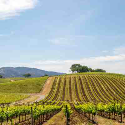 Ultimate Guide to Sonoma County Hikes!