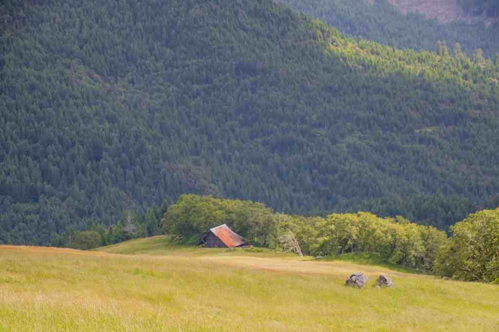 Redwood National Park - Humboldt County | Hike Then Wine
