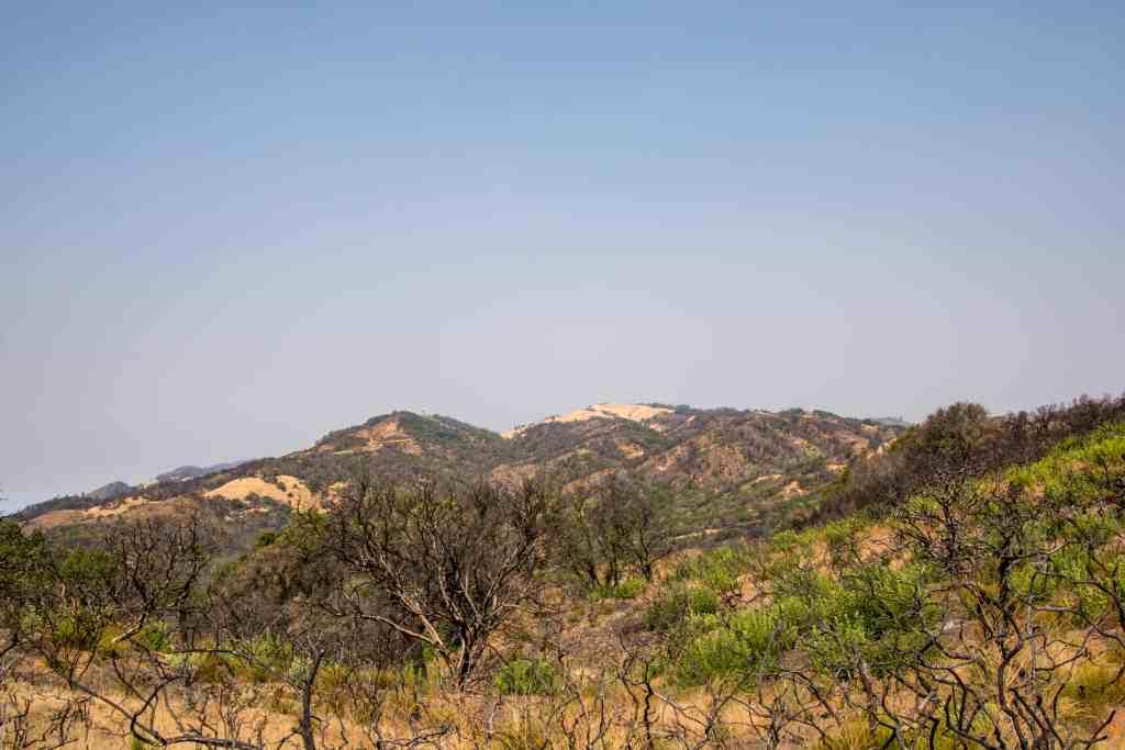 Brushy Peaks Trail @ Sugarloaf Ridge SP - Sonoma | Hike Then Wine