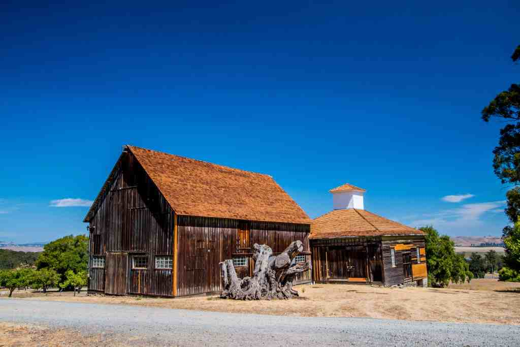 Olompali State Historic Park - Marin   Hike Then Wine