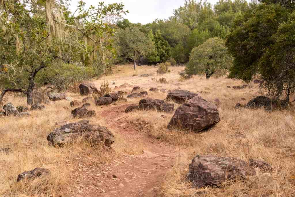 Sunday Hike @ Annadel State Park - Santa Rosa