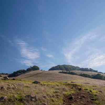 Local Adventures at Taylor Mountain – Sonoma County