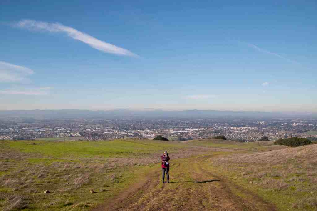 Local Adventures at Taylor Mountain - Sonoma County | Hike Then Wine