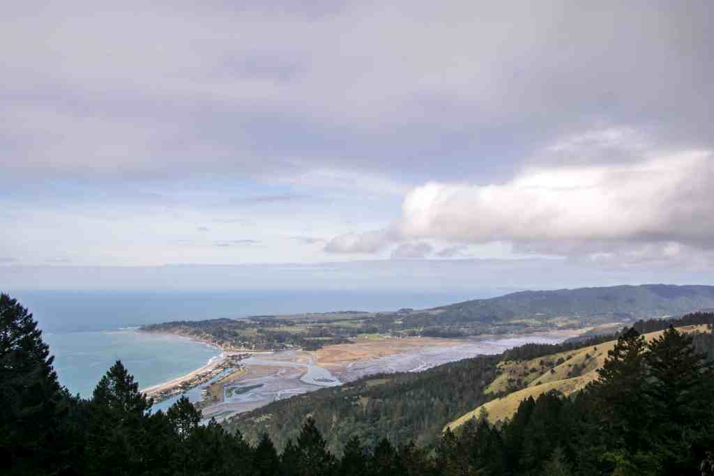 Soaking in the Views Along Willow Camp Fire Road - Marin | Hike Then Wine