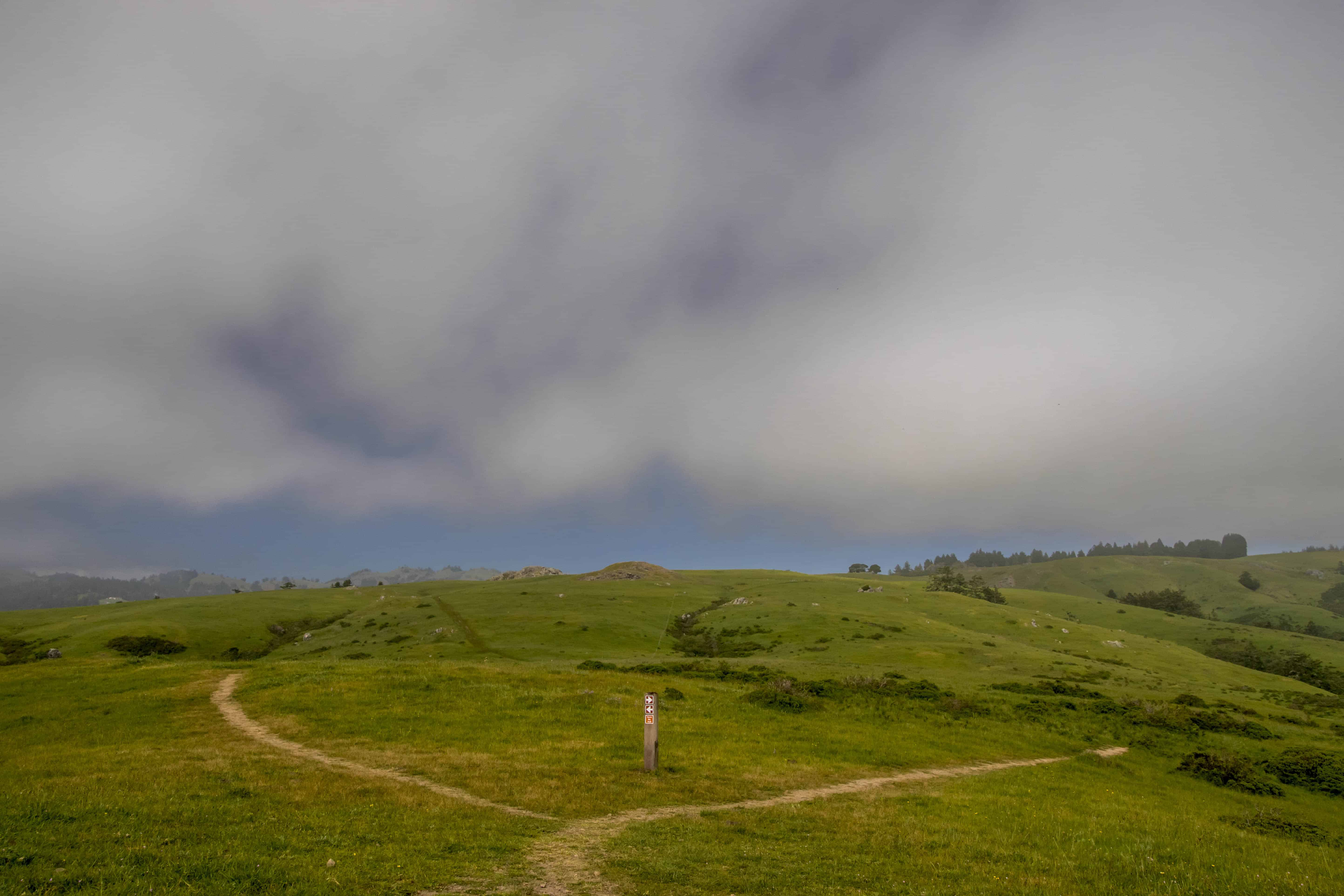 Sea to Sky and Raptor Ridge - Jenner Headlands Preserve Sonoma County