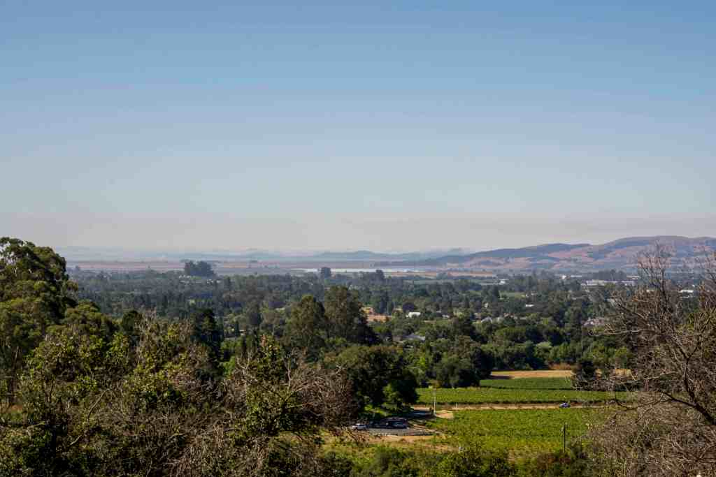 Bartholomew Park Estate Winery - Hiking and Wine! | Hike Then Wine