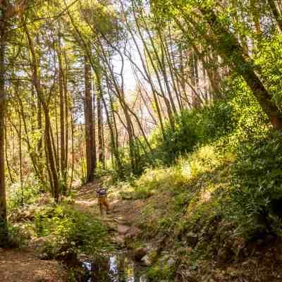 Bartholomew Park Estate Winery – Hiking and Wine!