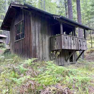 Mendocino Woodlands Cabins