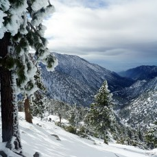 Register Ridge Snow Hike, January 9 2016