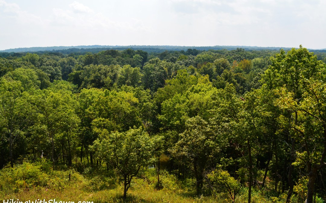 4 Longer Southern Illinois Trails in or around the Shawnee National Forest