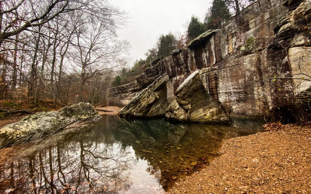 Ultimate Trail Guide: Bell Smith Springs Recreation Area