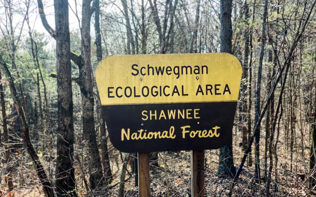Hiking with Shawn's Trail Guide Series: Schwegman Ecological Area & Groundhog Den