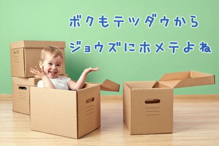赤ちゃんに引っ越しの手伝いはできませんのイメージ