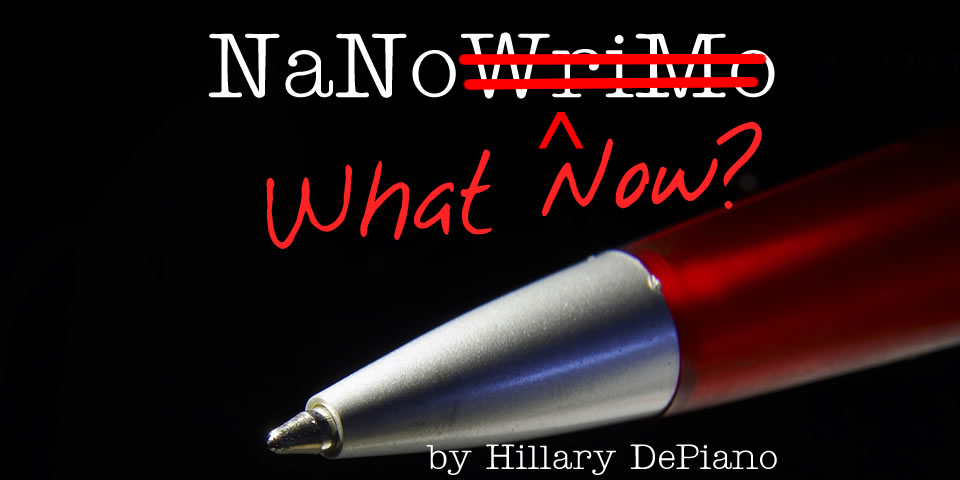 NaNo What Now? Finding your editing process, revising your NaNoWriMo book and building a writing career through publishing and beyond