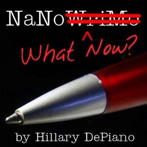NaNo What Now square