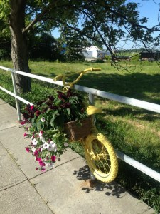Bike flower power