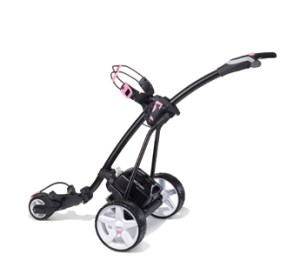 Hill Billy in black with Pink Trim and Standard lead acid battery