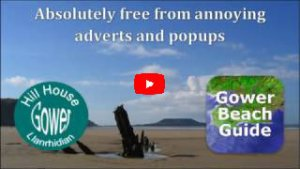 Gower beach guide promo video