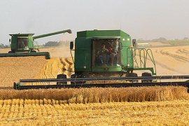 HarvestJostFamilyP6268456.jpg