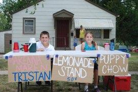 LemonadeStand6794